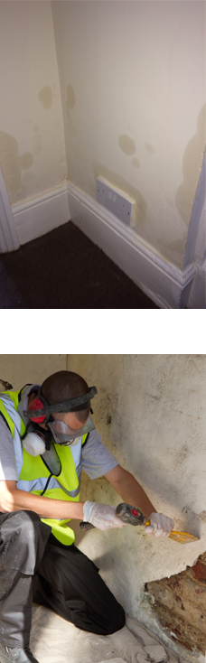 Damp proofing Colchester
